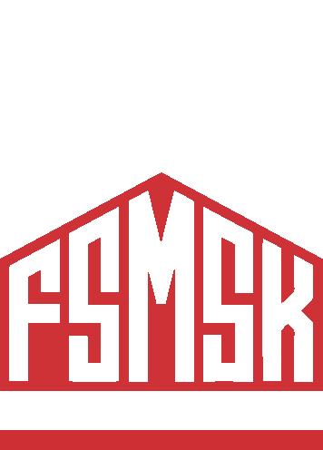 Face Mask - fsmsk